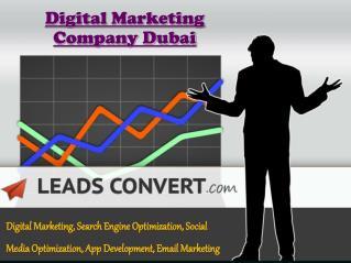 SEO Services Company Dubai
