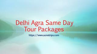Delhi Agra Same Day Tour Packages