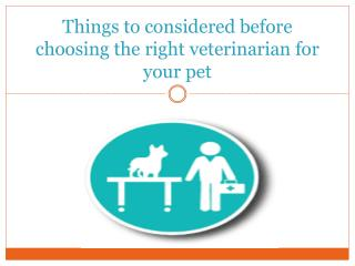 Things to considered before choosing the right veterinarian for your pet