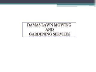 Find the High Quality Gardening Services in Parramatta