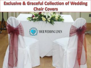 Exclusive & Graceful Collection of Wedding Chair Covers
