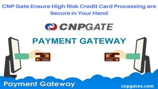 CNP Gate Ensure High Risk Credit Card Processing are Secure in Your Hand
