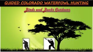 Guided Waterfowl Hunting in Colorado