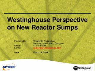 Westinghouse Perspective on New Reactor Sumps