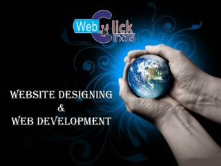 Benefits Of Hiring A Professional Web Development Company In Delhi