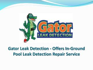 Gator Leak Detection - Offers In-Ground Pool Leak Detection Repair Service