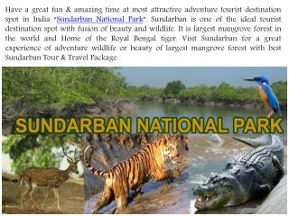 Enjoy Best Sundarban Tour & Travel Package with Affordable Price