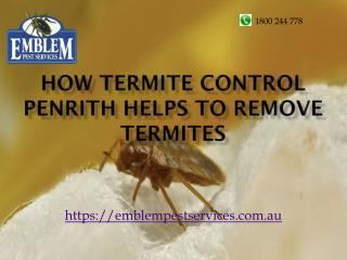 How Termite Control Penrith Helps To Remove Termites