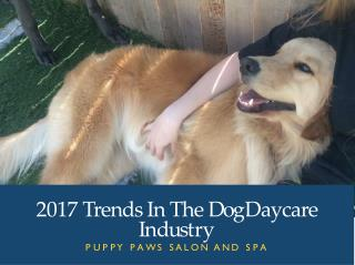 2017 Trends In The Dog Daycare Industry