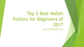 Best Mallet Putters for Beginners