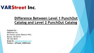 Difference Between Level 1 PunchOut Catalog and Level 2 PunchOut Catalog