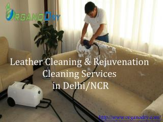 Leather Cleaning & Rejuvenation Cleaning Services in Delhi/NCR
