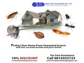 Get 100% effective, odorless and safe pest control solutions for termite's eradication.