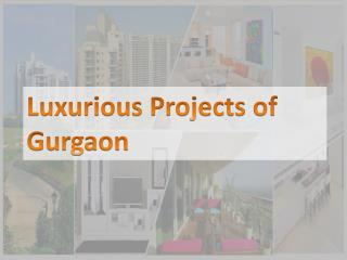 Top 10 Luxurious Projects in Gurgaon by Ireo & Unitech