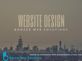 Website Design Development - Bonzer Web Solutions