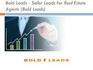 Bold Leads - Seller Leads for Real Estate Agents (Bold Leads)
