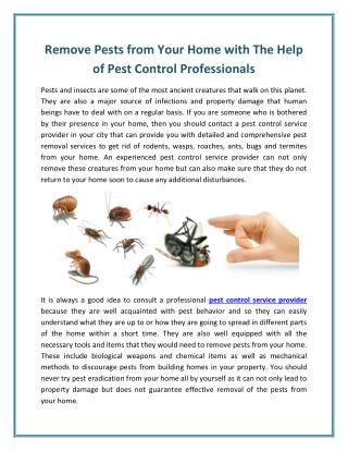 Pest Control in Surat - The Gateway To Protect Your Home and Your Health