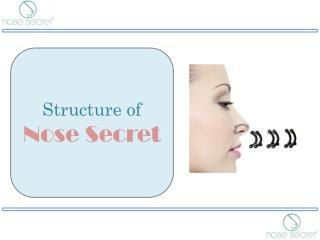 Nose Lifting Clip - Structure of Nose Secret