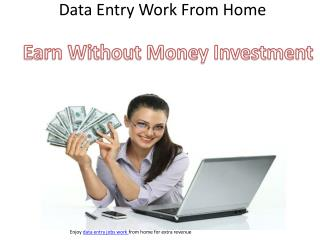 Online Data Entry Job Work From Home without Investment