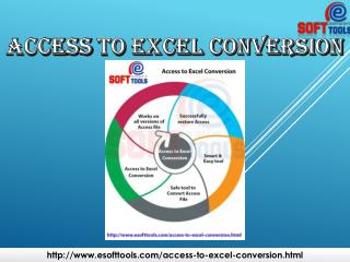 Access to Excel Conversion