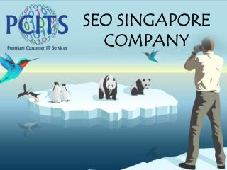 SEO Singapore: Web Development Company