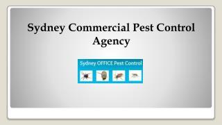 Sydney Commercial Pest Control Agency