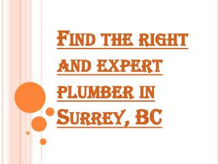 Find the Right and Expert Plumber Services for your Home