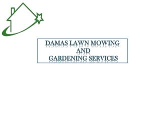 Find Reliable & Affordable Gardening Services in Marsfield