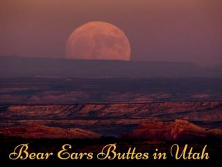 Bear Ears Buttes in Utah