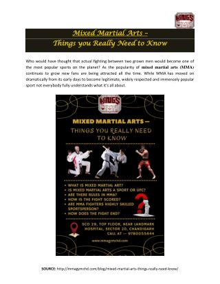 Mixed Martial Arts – Things you Really Need to Know