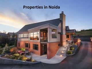 Properties in Noida