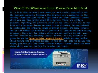 What To Do When Your Epson Printer Does Not Print