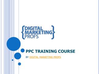 PPC Certification Course Training Institute In Rohini Delhi