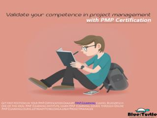 PMP Elearning Certification Course - Blueiurtle