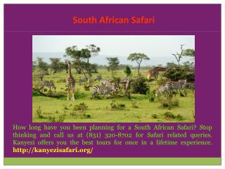 South Africa Safari Cost
