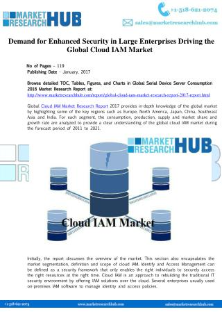 Global Cloud IAM Market Research Report 2017