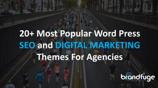 20  Most Popular WordPress SEO and Digital Marketing Themes For Agencies