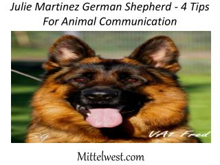 Julie Martinez German Shepherd - 4 Tips For Animal Communication