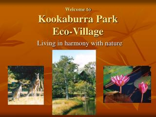 Welcome to Kookaburra Park  Eco-Village