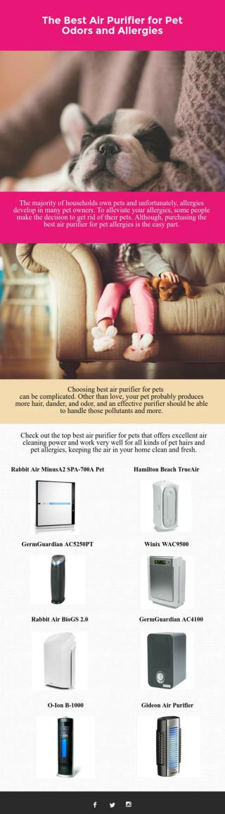 The Best Air Purifier for Pet Odors and Allergies