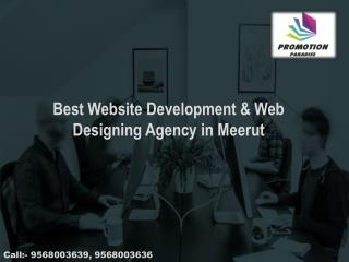 Website Design and Development Company in Meerut  91-9568003639