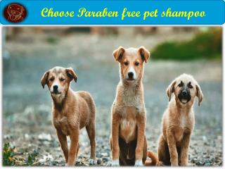 Our Sulfate free pet shampoo