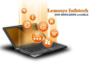 Lemosys InfoTech Offers Various IT Services at Affordable Cost
