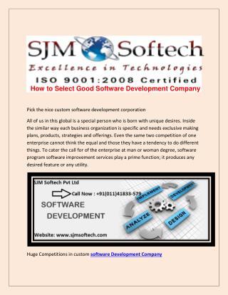 Website Design and Software Development service