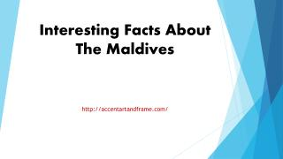 Interesting Facts About The Maldives