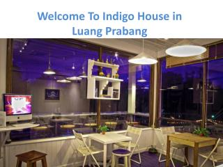 List of Service Offered By Indigo House in Laos