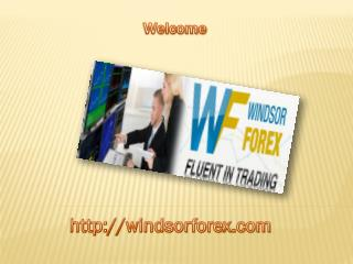 Best Forex Indicators Free Download