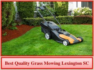 Best Quality Grass Mowing Lexington SC