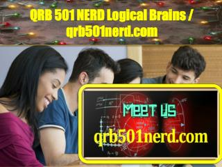 QRB 501 NERD Logical Brains / qrb501nerd.com