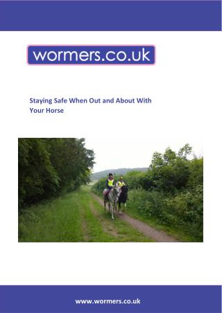 Staying Safe when Out and About with your Horse
